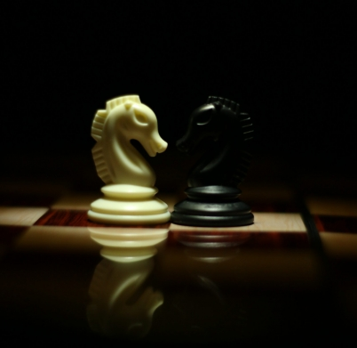 two-white-and-black-chess-knights-facing-each-other-on-chess-839428